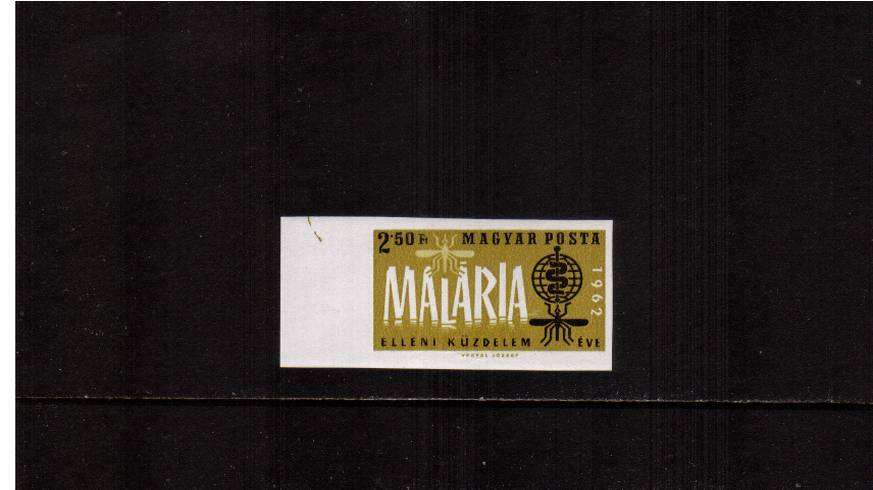 Malaria Eradication<br/>