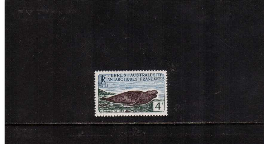 4F Leopard Seal definitive single superb unmounted mint.