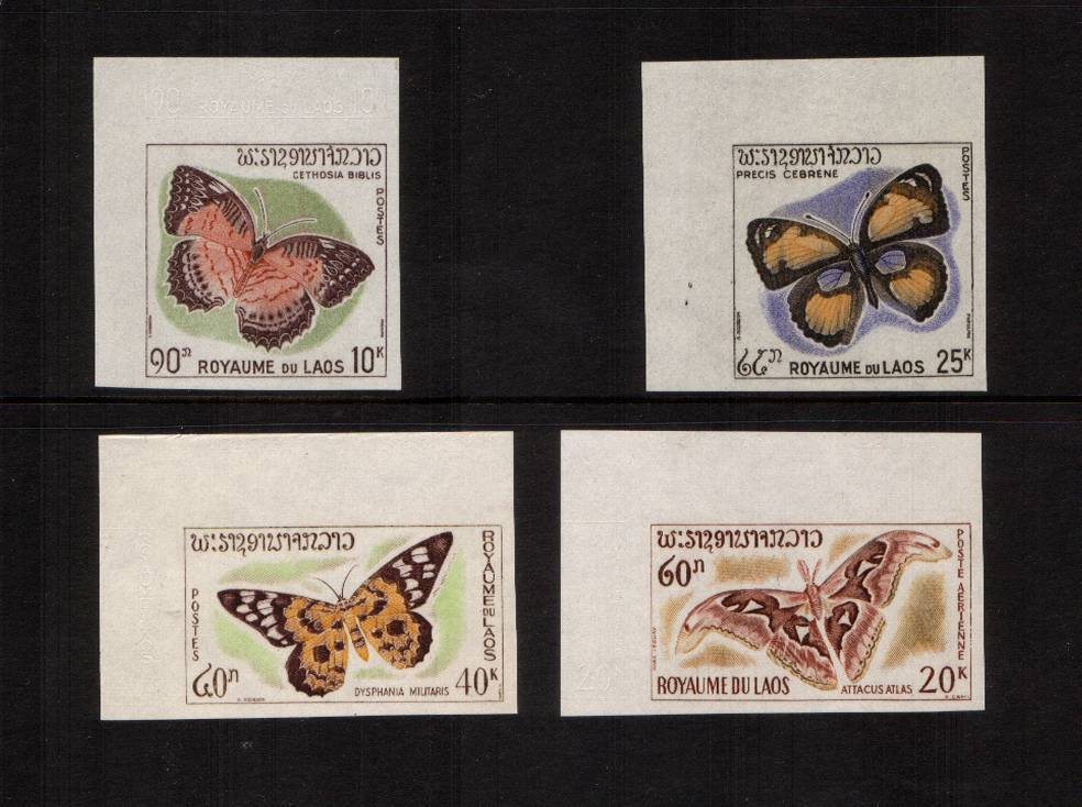 Butterflies and Moths<br/>